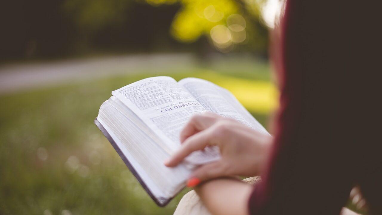 参考書を読む人